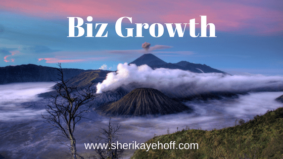 Is Your Biz Growing? #businessgrowth #womeninbusiness #attractingclients #smallbusiness #quiz sherikayehoff.com/blog/