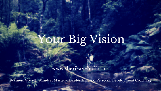 Your Big Vision carries you through frustration and low points in your business #vision #smallbusiness #businessgrowth  sherikayehoff.com